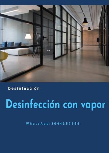 desinfección con vapor