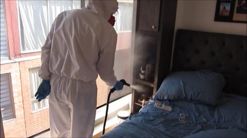 desinfección de ambientes con vapor y pro binner hasta 95 m2