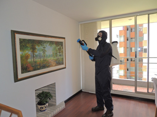 desinfección de hogares con amonio cuaternario