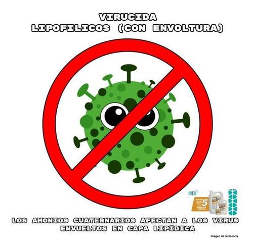 desinfección efectiva