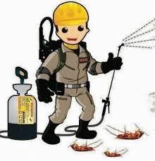 desinfeccion fumigación anti bacterias - virus - hongos