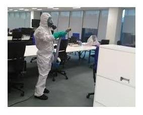 desinfeccion fumigacion desinfecciones desratización