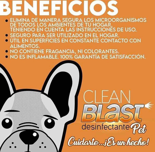 desinfección mascotas