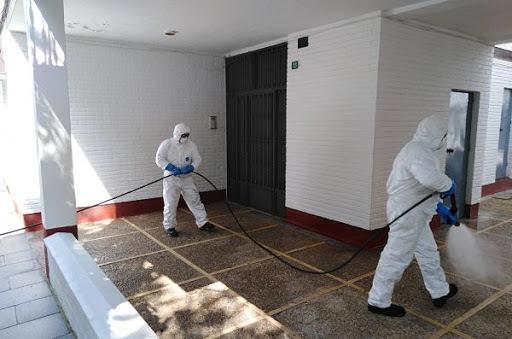 desinfección y fumigacion de casas y locales