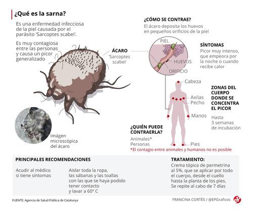 desinfección/fumigación