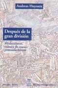 despues de la gran division. modernismo, cultura - huyssen