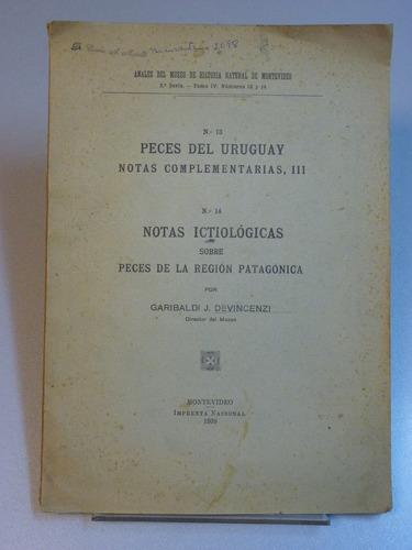 devincenzi, g. j. nº 13: peces del uruguay. 1939