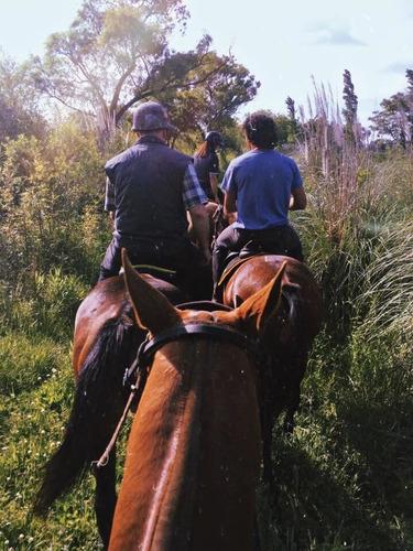 día de campo con cabalgata polo day y asado, en pilar