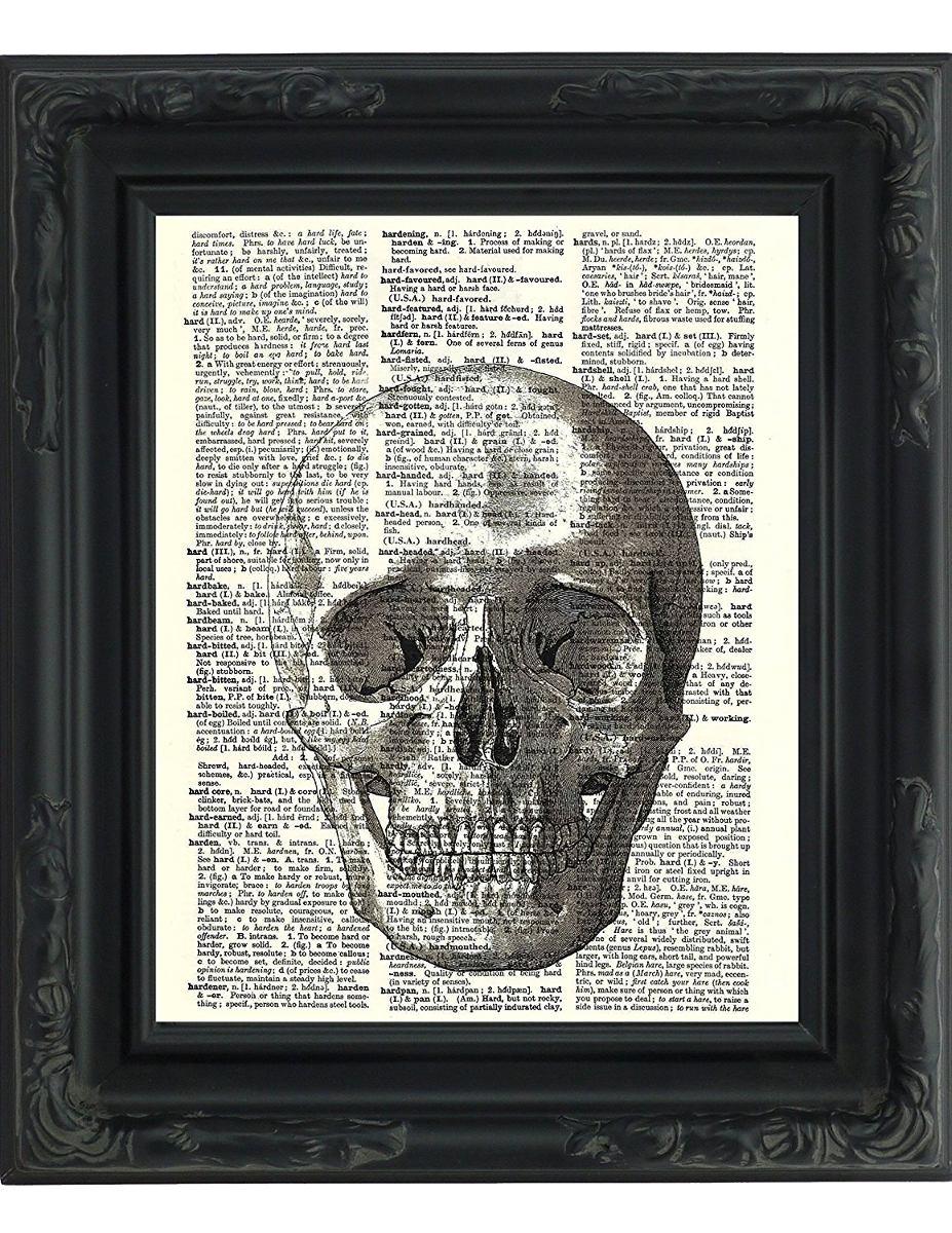 Diagrama Anatómico Del Cráneo Humano - Impres | Hogar - $ 21.914 en ...
