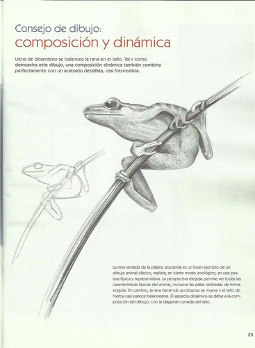 dibujo fácil: dibujos de animales