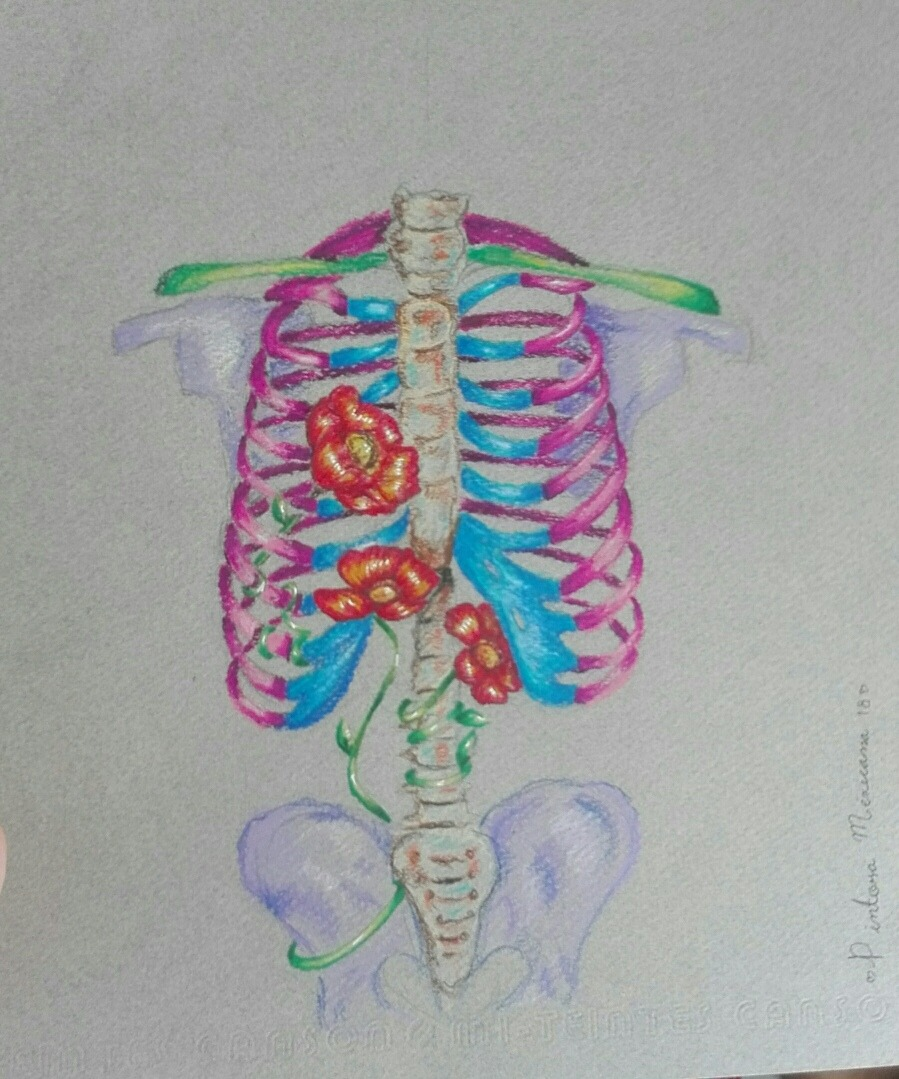 Dibujo Original Anatomia Humana Arte Mexicano - $ 160.00 en Mercado ...