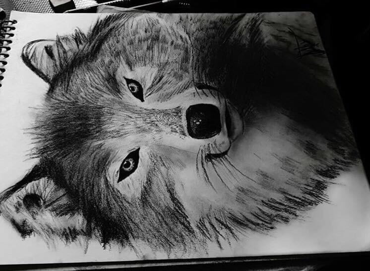 Dibujos A Carboncillo Y Lapiz