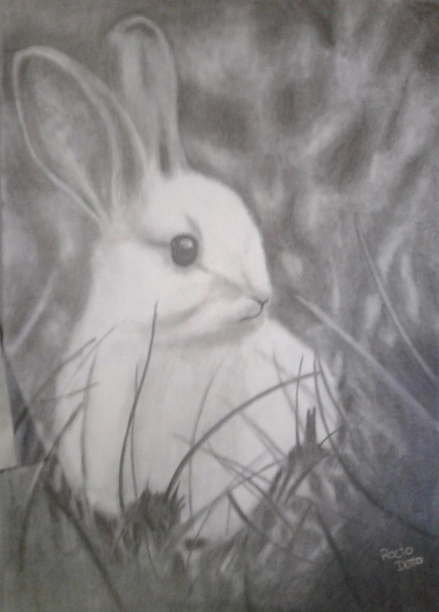 Dibujos Realistas De Animales A Lapiz 7000 En Mercado Libre