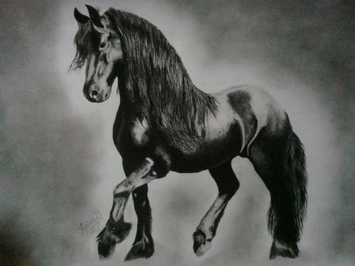 dibujos: técnica a carboncillo y grafito