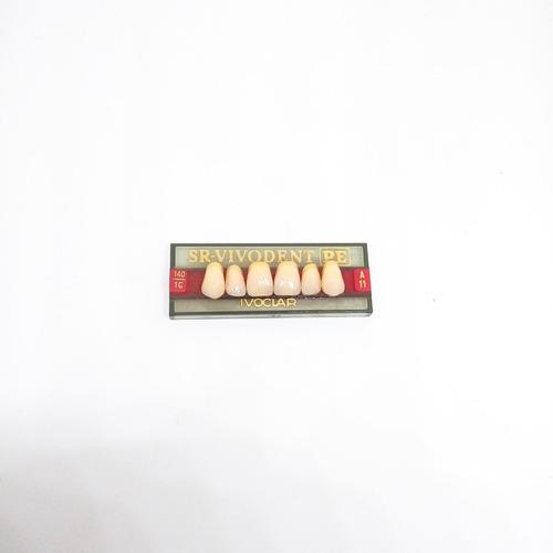 dientes vivodent ivoclar color 1 c  140 novacekdental