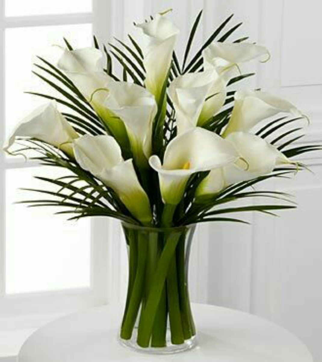 flower vase green with Mlm 550319156 Diferentes Floreros De Vidrio Grandes  Jm on Pink Lily Bouquet as well Watch additionally Matisse The Joy Of Things likewise Monstera Leaves Tropical Greenery likewise 25 Floating Flowers And Candles Centerpieces.