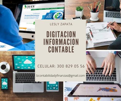 digitacion de informacion contable