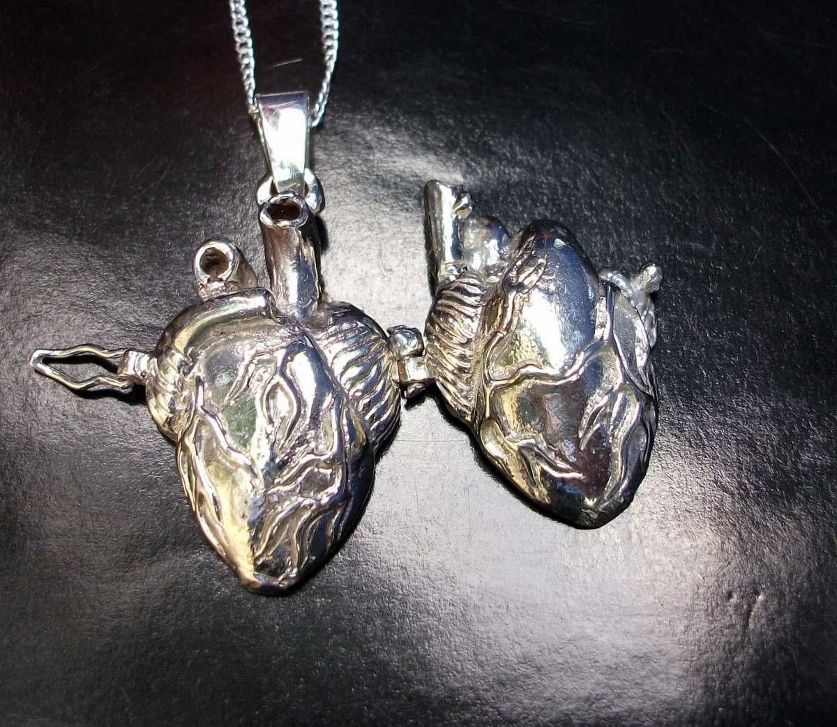 Atractivo Corazón Humano Marcado Galería - Imágenes de Anatomía ...