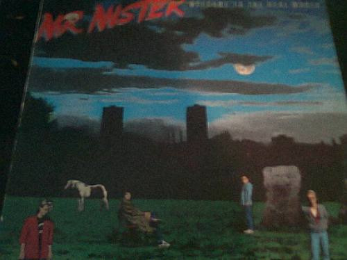disco acetato de mr mister