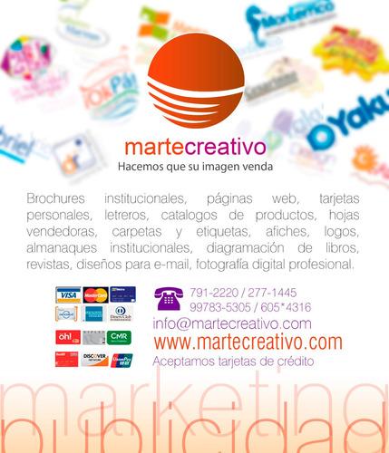diseñador gráfico freelance, diseño de paginas web, logotipo