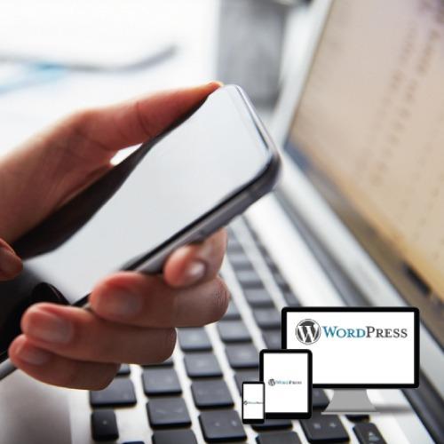 diseño de página web y tienda en linea con carrito y webpay