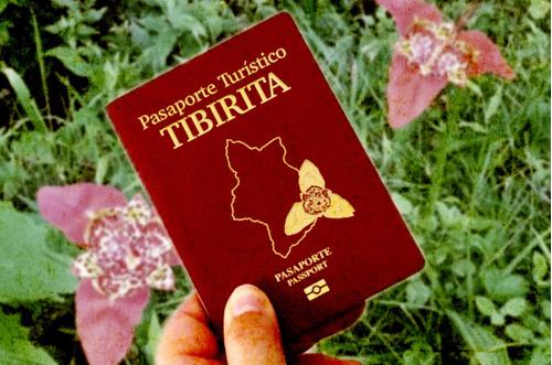 diseño de pasaportes para turismo local