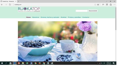 diseño pagina web económica+ hosting $39.000 unico pago!