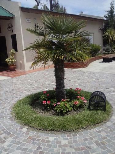 diseño: paisajes, riego, mantenimiento, piletas, jardinero