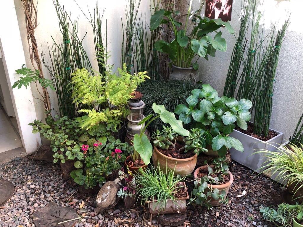 Dise o parques jardines maceteros balcones terrazas - Maceteros para terrazas ...
