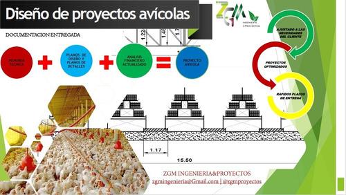 diseño proyectos avicolas, pollos de engorde