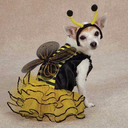 disfraces importados para perritos disfraz