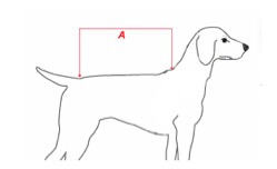 disfraces para perros  | talla m
