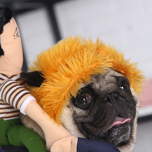 disfraz de mascota para halloween, divertido, para perros, p