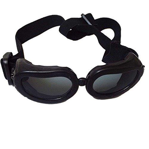 disfrutando de la moda anti-ultravioleta gafas de sol de la