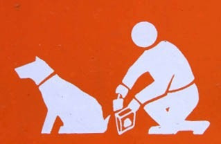 dispensador de bolsas sanitarias para perros