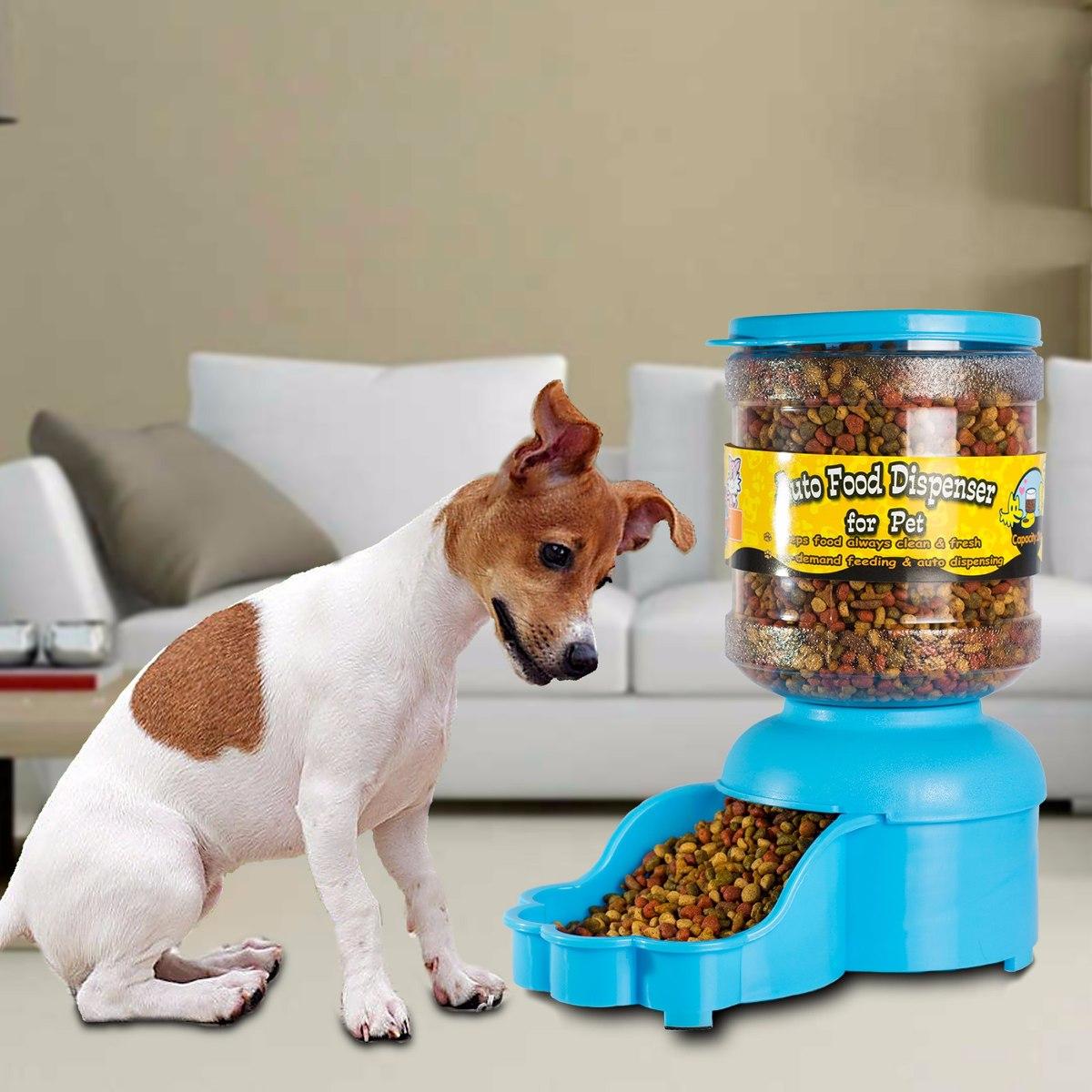 Dispensador de comida y de agua para perros y gatos s for Alimento para perros