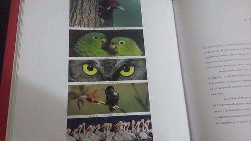 diversidad de fauna mexicana libro mexico