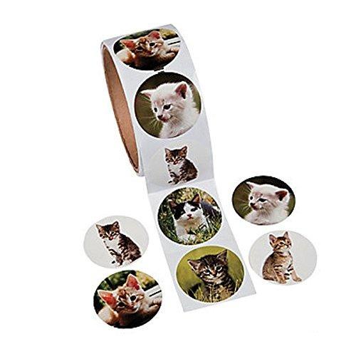 divertido express papel gato foto rollo pegatinas 100 pegati