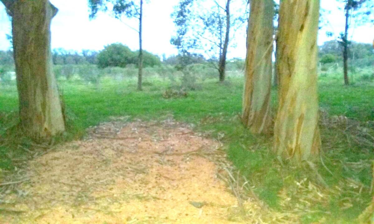 divino terreno en manantiales, cercado, pronto para edificar