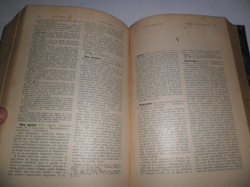 dizionario merceologia chimica applicata ulrico hoepli 1913