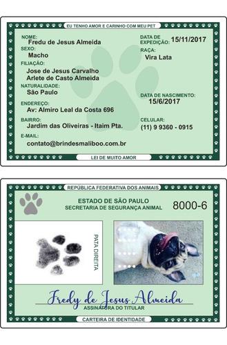 documento rg pet identidade pet cachorro gato estimação