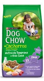 dog chow 21kg