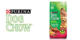 dog chow adultos