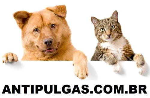domínio: antipulgas.com.br