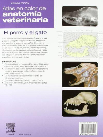 Done: Atlas Color De Anatomía Veterinaria. Perro Y Gato, 2ª ...