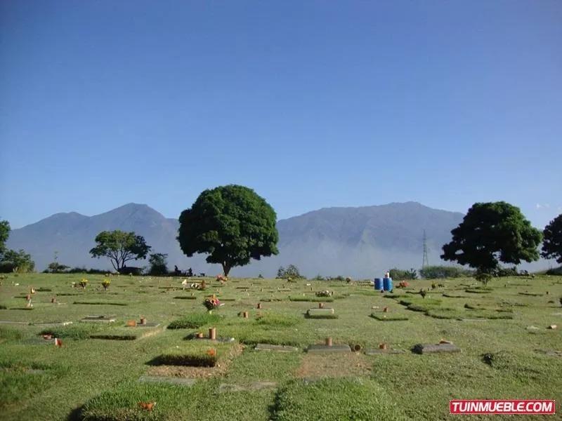 dos (2) parcelas en el cementerio del este compradas en 1989