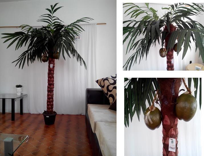 Dracenas yuca palmas maa 1 en mercado libre - Como hacer una palmera artificial ...