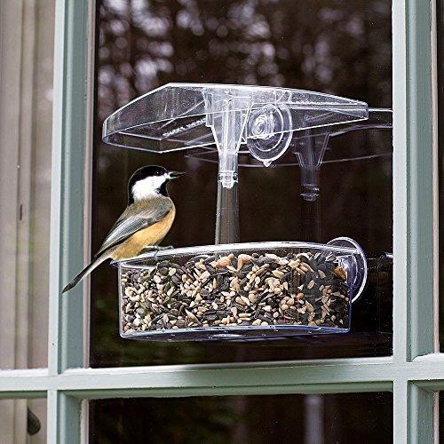 droll yankees owf observador ventana comedero para pájaro