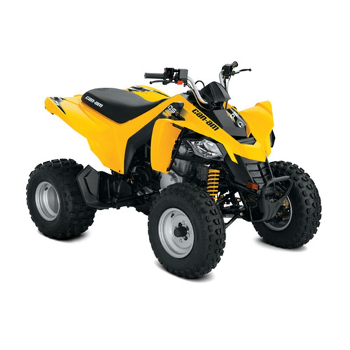 ds 250 can am 2019 .