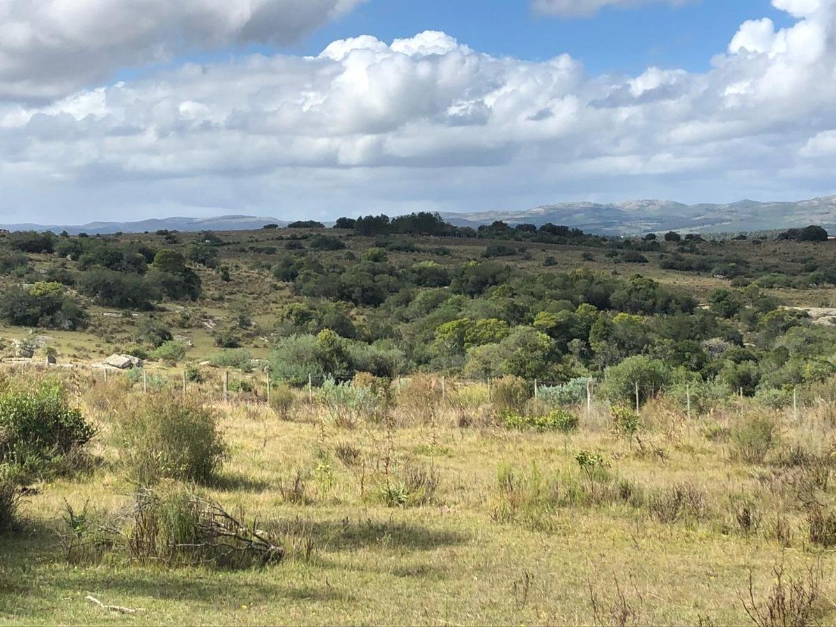 dueño vende campo de 77 has a 50 km de punta del este
